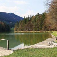Brunarica jezero Braslovče